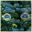 White House North and South Portico Ornament Gift Set