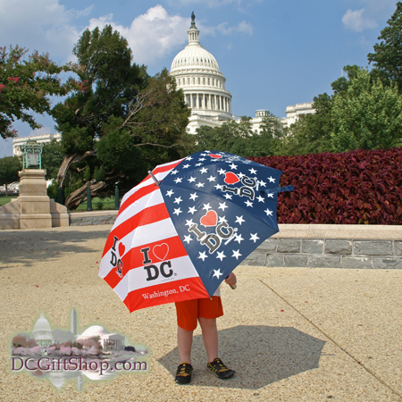 Washington DC Patriotic Umbrella
