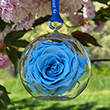 First Lady Jacqueline Kennedy Blue Rose Flower Ornament