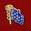 Commander-in-Chief Flag Pin