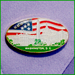 Washington DC Souvenir Pin