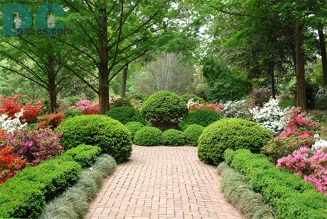 Limited Floral Print : Morrison Garden