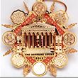 2013 Supreme Court Ornament