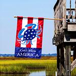 Flag, App, Reg, God Bless America