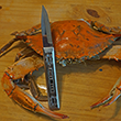 Maryland Pewter Crab Knife