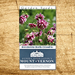 Nora Barlow Columbine Heirloom Seeds - 3 pack
