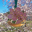 Washington DC Cherry Blossom Ornament